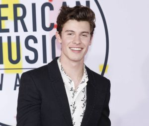 MTV EMA 2018 : Shawn Mendes vainqueur
