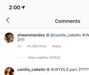 Camila Cabello et Shawn Mendes : une nouvelle collaboration est en route