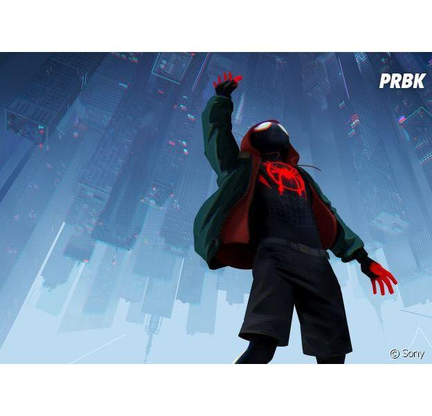 Spider-Man New Generation est actuellement disponible en DVD et Blu-Ray.