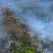 L'Amazonie ravagée par des feux de forêt violents, les internautes entre larmes et rage