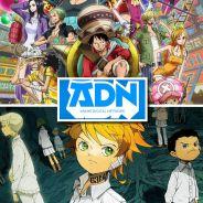One Piece : bientôt l'intégralité de l'animé sur ADN ? The Promised Neverland en approche