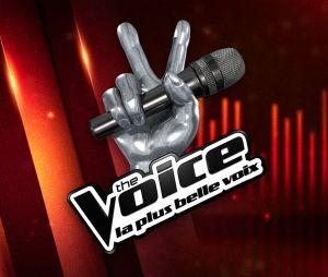 The Voice 7 : le salaire des candidats pour les primes en direct dévoilé