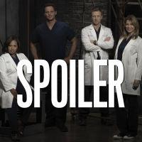Grey's Anatomy saison 16 : deux ruptures dans l'épisode 14