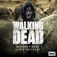 """The Walking Dead saison 10 : pas de vraie fin, mais un dernier épisode """"épique et magnifique"""""""