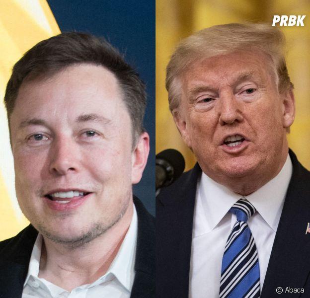 Déconfinement : Elon Musk du côté de Donald Trump, il perd de nombreux fans sur Twitter