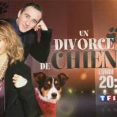 Un divorce de chien avec Elie Semoun sur TF1 ce soir ... bande annonce