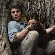 Love and Monsters : le film Netflix avec Dylan O'Brien peut-il avoir une suite ?