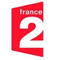 Tsunami et séisme au Japon ... soirée spéciale sur France 2 ce soir