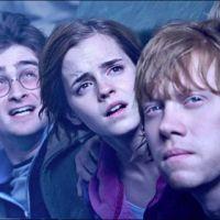Harry Potter 7 partie 2 ... deux images tirées du film (photos)