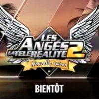 Les Anges de la télé-réalité 2 ... Le casting officiel en vidéo
