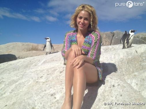 Shakira préfère les pingouins maintenant