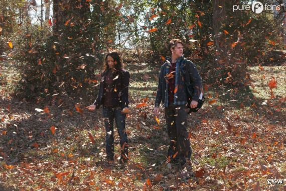 Jeremy va avoir de la compétition pour le coeur de Bonnie dans la saison 4 de Vampire Diaries