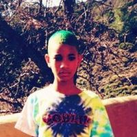 Willow Smith : un blog fashion pour la pro du steet-style