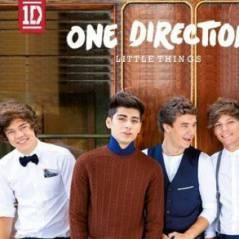 One Direction : Little Things, leur magnifique ballade signée Ed Sheeran (AUDIO)