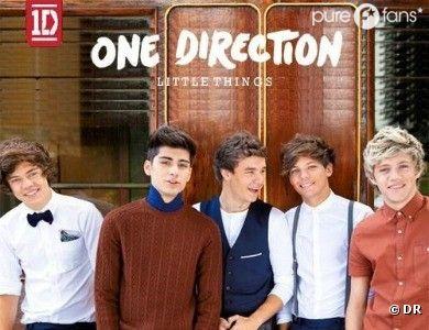 Les One Direction nous donnent la chair de poule avec Little Things