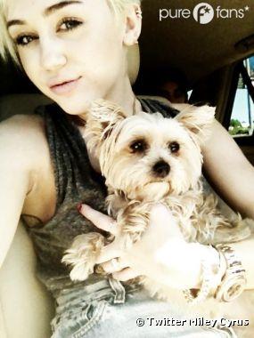 Miley Cyrus est dévastée par la mort de son chien !