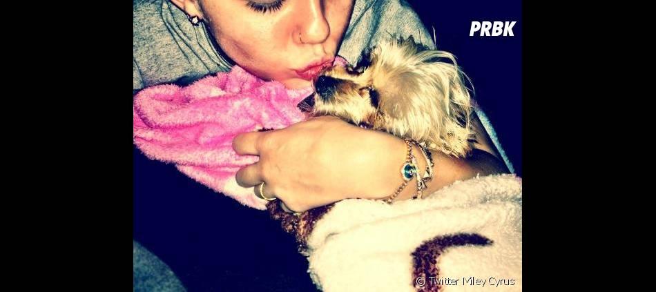 Miley Cyrus aura du mal à s'en remettre !