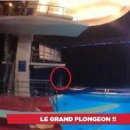 Splash : Un premier plongeon avant le prime... grâce à Cyril Hanouna !