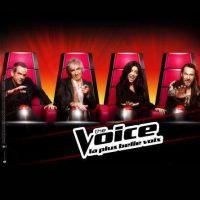 The Voice 2 : Les Battles démarrent samedi sur TF1 mais comment ça marche ?