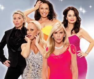Découvrez ce soir sur NT1 les cinq ménagères des Vraies Housewives