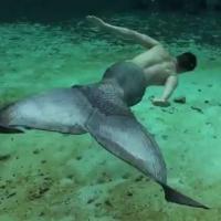 Oubliez Ariel, la petite sirène est...un homme