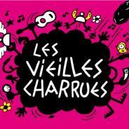 Vieilles Charrues 2013 : Phoenix ou encore Elton John au programme