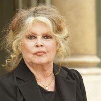 Brigitte Bardot a retrouvé sa chatte : Rontonton est revenu au bercail, ouf !