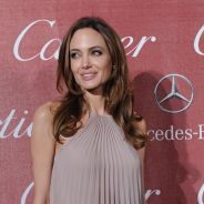 Angelina Jolie et sa mastectomie : Christine Boutin dérape sur Twitter