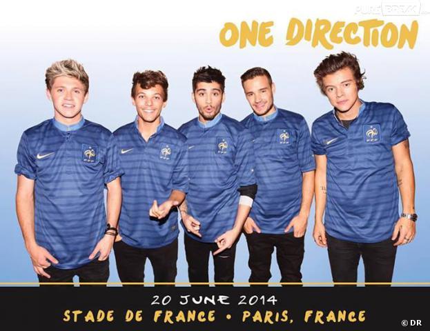 One Direction au Stade de France le 21 juin 2014