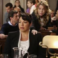 Grey's Anatomy saison 10, épisode 9 : la carrière de Callie en danger ?