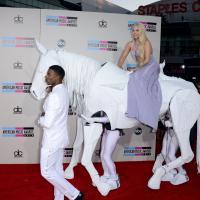 Lady Gaga à cheval, Miley Cyrus, One Direction... Le tapis rouge des AMA 2013