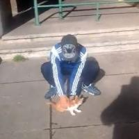 """Les internautes se mobilisent sur Facebook contre le Marseillais """"tueur de chat"""""""