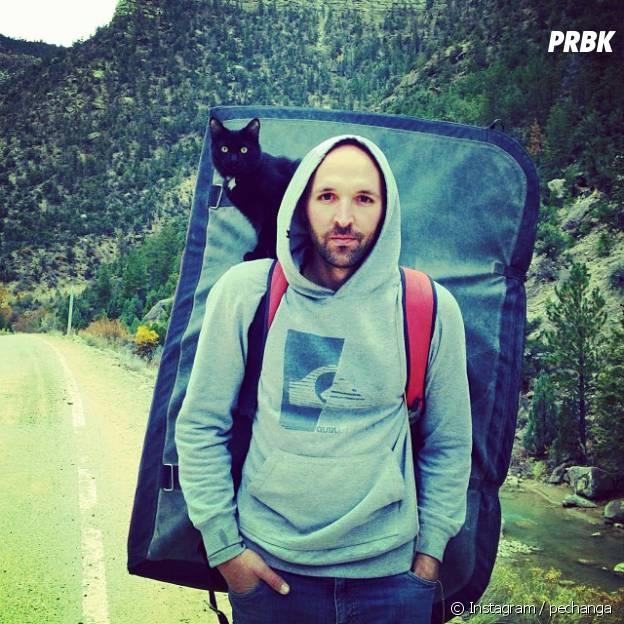 Millie : la chatte star d'Instagram qui pratique l'escalade et la randonnée