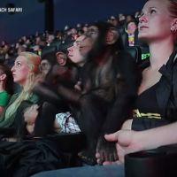 La Planète des Singes 2 : quand deux bébés chimpanzés découvrent le film au ciné