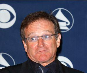 Robin Williams : mort tragique le 11 août 2014 en Californie