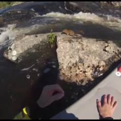 Un écureuil évite la noyade grâce un planchiste : un sauvetage incroyable