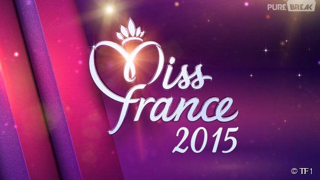 Miss France 2015 : les Miss qui ont fait parler