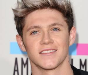 Niall Horan s'est fait remarquer à la télévision américain en dansant en caleçon, le 24 décembre 2014
