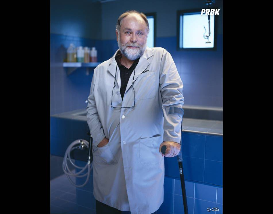 Les Experts saison 15 : le Dr Robbins (Robert David Hall) en danger de mort