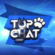 Moundir et Mady offrent leur voix à Top Chat, la nouvelle websérie au poil