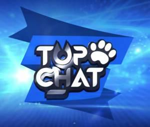 Top Chat : le trailer d'annonce de la nouvelle websérie