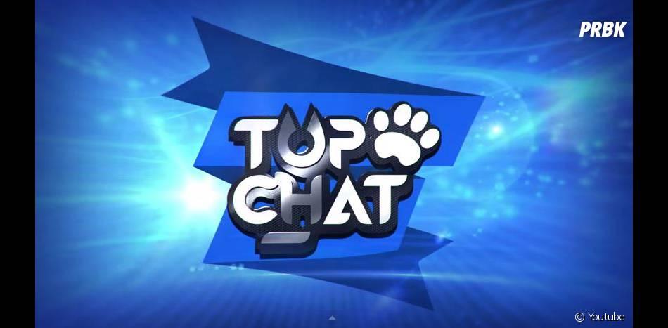 Top Chat est une nouvell websérie