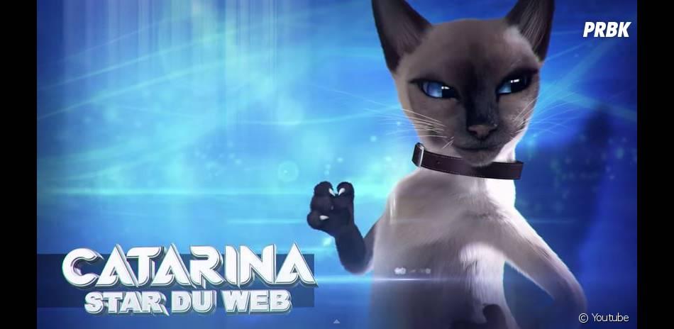 Top Chat : une websérie à la sauce LOLcats