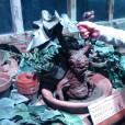 Harry Potter l'Exposition : les mandragores présentes