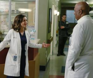 Grey's Anatomy saison 11, épisode 22 : Amelia (Caterina Scorsone) et Richard (James Pickens Jr) sur une photo