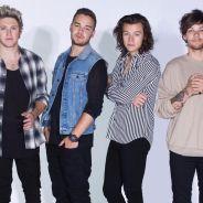 One Direction : Harry Styles et Louis Tomlinson fêtent les 5 ans du groupe sur Twitter