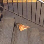 Quand un rat prend le métro avec... une part de pizza : la vidéo improbable