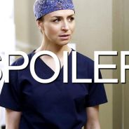 Grey's Anatomy saison 12 : Amelia et Nathan bientôt en couple ?