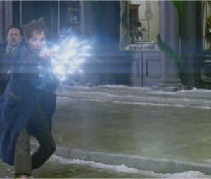 Les Animaux Fantastiques : première bande-annonce du spin-off d'Harry Potter