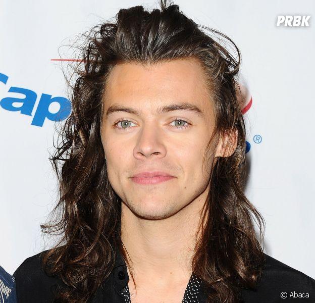 Harry Styles : ses cheveux longs bientôt rasés pour ses débuts au cinéma ?